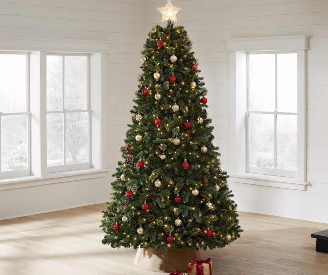 christmas-trees-type-decorated2